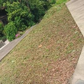 敷地の草刈り(妙高市 K様)