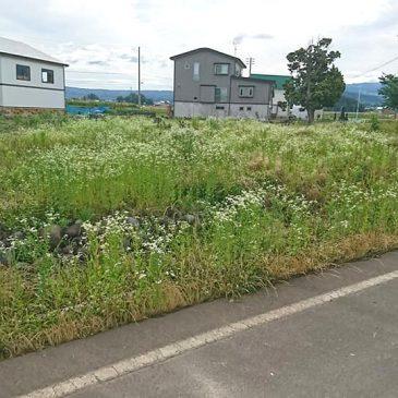 空き地の草刈り、除草剤散布(上越市 S様)