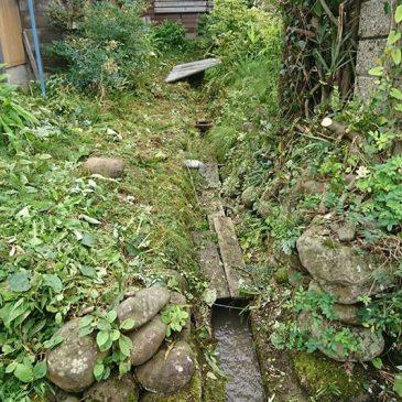 用水路周りの草刈りとお庭の背が高くなった木の枝打ち(上越市 Sさま)