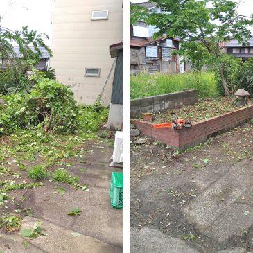 庭木の伐採、草刈り、後片付け(妙高市 N様)