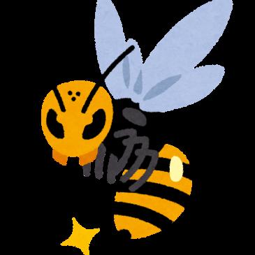 ハチ駆除(妙高市 O様)